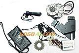GoGoA1 250W Electric Bicycle Conversion / Ebike PMDC Motor Kit 4 DIY Electric