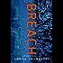 Breach: A Cyber Thriller