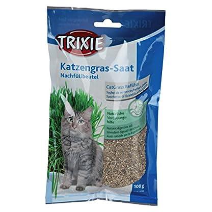 Trixie Cat Grass (100 g) (Multicoloured) 1
