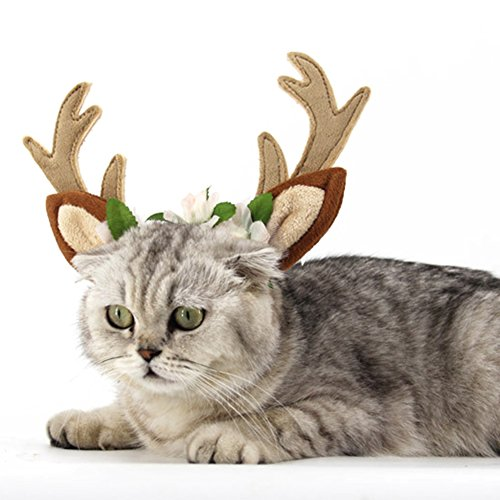 Rentier Kleinen Hund Den Für Kostüm (beiguoxia Weihnachten Stirnband Hund Katze Rentier Geweihe Hut mit Blumen für Teddy)