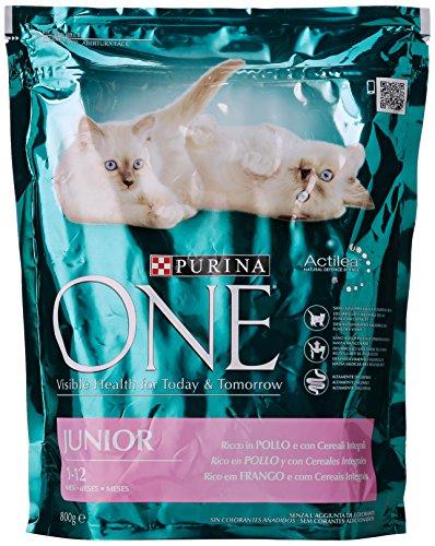 purina-one-junior-pollo-riso-gr800