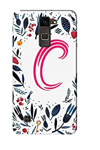 AMAN Pattern C 3D Back Cover for LG Stylus 2