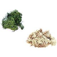 inerra Finnland Moos - Packung zu 2 gemischte Farben 500 g Beutel - Rentier Moos Handwerk Pflanzen Töpfe Blumen... preisvergleich bei billige-tabletten.eu