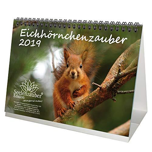 Eichhörnchenzauber · DIN A5 · Premium Kalender/Tischkalender 2019 · Eichhörnchen · Wald · Natur · Tier · Wildnis · Geschenk-Set mit 1 Grußkarte und 1 Weihnachtskarte · Edition Seelenzauber