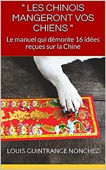 """"""" LES CHINOIS MANGERONT VOS CHIENS """": Le manuel qui démonte 16 idées reçues sur la Chine"""