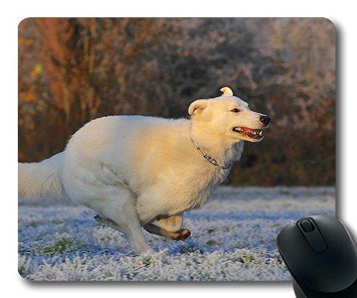 Gaming mouse pad. Mac - und Windows - gamer - Schweizer schäferhund Hunde der rasse Frost im Winter verkaufen die Frauen / Männer Yanteng Kinder (Rasse Schäferhund)