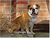 Merchandise for Fans Blechschild/Warnschild / Türschild - Aluminium - 20x30cm - mit Spruch - Motiv: Englische Bulldogge- 02