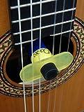 Oasis Vase Humidificateur Hygromètre pour guitare