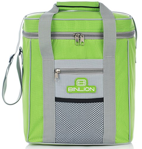 binlion-9-can-insulated-cooler-tote-bag-green