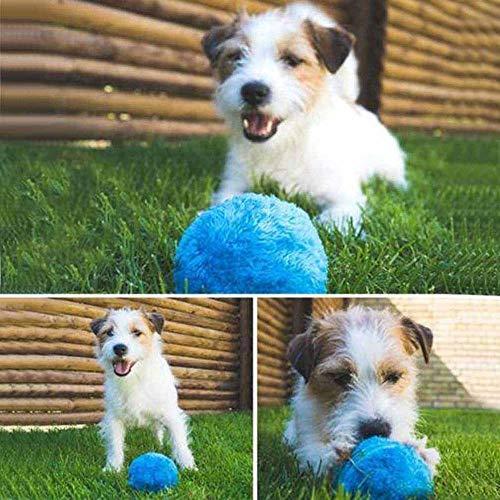 Xinfang Funny Pet Elektrische Spielzeug Ball - Hält Ihren Hund Aktiv und - Hundespielzeug Bewegliches