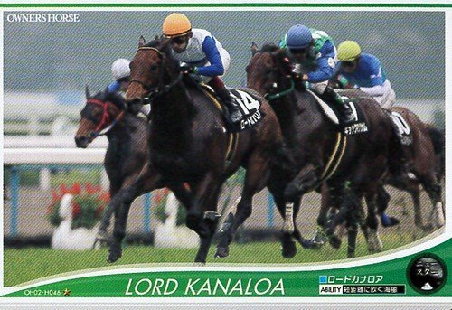 オーナーズホース/OWNERS HORSE【ロードカナロア】OH02-H046