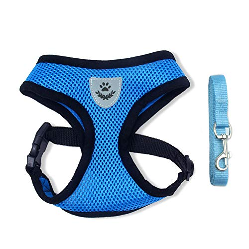 BLEVET Air Mesh Gewebe Atmungsaktives Hundegeschirr für Kleinen Hund oder Katze MZ046 (S, Blue) - Air-mesh-gewebe