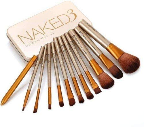 NAKEDPLUS Makeup Brushes Kit with A Silver Storage Box - Set of 12 1