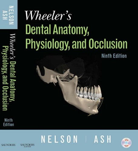 Wheeler's Dental Anatomy, Physiology and Occlusion - E-Book