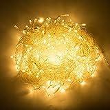 Bloomwin- 6m x 1m 256leds LED Lichtervorhang Warmweiss Lichtnetz für Weinachten, Hochzeit, Restaurants, Festivals