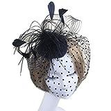 Frcolor Retro Style Vogelkäfig, Netz Gesichtsschleier, Feder Fascinator, Haarspange