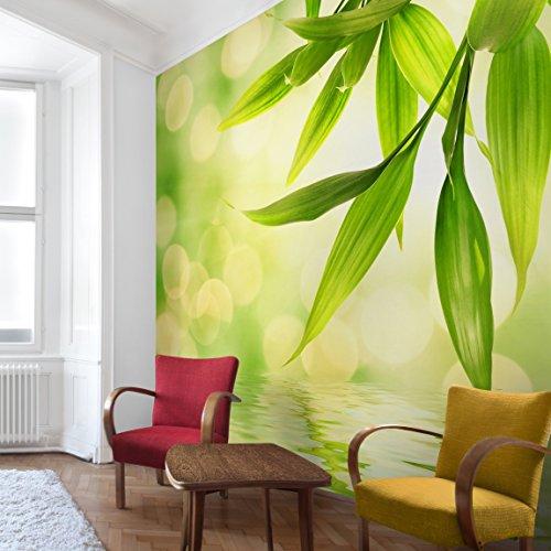 Apalis Vliestapete Blumentapete Green Ambiance I Fototapete Quadrat   Vlies Tapete Wandtapete Wandbild Foto 3D Fototapete für Schlafzimmer Wohnzimmer Küche   Größe: 288x288 cm, grün, 97717 Blumen-print-tapete
