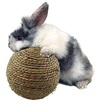 Boule de jeu d'herbe tissée KAYI pour les lapins Boue de nettoyage de jouets saine pour les chats d'hamster