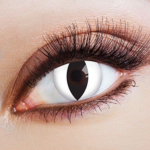 aricona Farblinsen Farbige Katzenaugen Kontaktlinsen Catwalk -Deckende Jahreslinsen für dunkle und helle Augenfarben ohne Stärke,Farblinsen für Karneval,Fasching,Motto-Partys und Halloween (Catwoman Kostüm Amazon)
