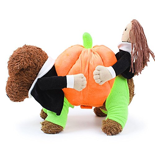Easylifer Kreative Lustige Hundewelpen Kleidung Teddy nette Kostüme Novel Tragen Kürbis Fancy Hundewelpen (Kostüme Kreative Nette)