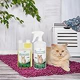 Geruchsneutralisierer Spray für Katzen – natürlicher Katzenurin Entferner – gegen Katzenklo Geruch (500ml Konzentrat ergeben 25 Liter gebrauchsfertigen Katzenurin Geruchsentferner) - 3