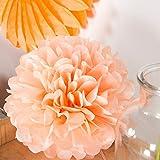 6er Set farbige Pompoms Apricot 25cm Seidenpapier Blumen