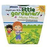 Johnsons Starter Topf Mimosen Samen für kleine Gärtner