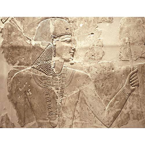 Fototapete Ägypten Pharao Vlies Wand Tapete Wohnzimmer Schlafzimmer Büro Flur Dekoration Wandbilder XXL Moderne Wanddeko - 100{5269db56b84379123d51cfc5258fab614865f23d5788e44872aff6364a6d9221} MADE IN GERMANY - Runa Tapeten 9136010a