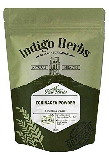 Indigo Herbs Echinacea in Polvere 250g
