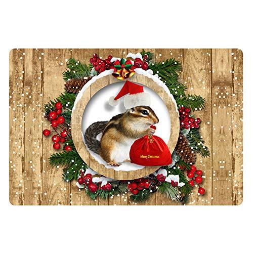 Vivid Squirrel Mat Duradera Decoración navideña