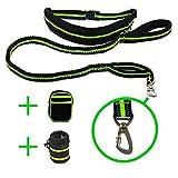 JOGGING-LEINE von iQ-Pet® | 2,4 m lange Premium Hunde-Leine + Laufgürtel | hochwertiger Sicherheits-Karabiner | Reflektierende Lauf-Leine | Elastische Bungee-Leine | Freihand-Leine, Dehnbare Bauch-Leine + Bauchgurt (Grün)