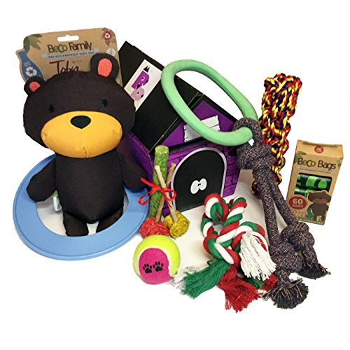 Large Dog Toy Hamper