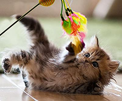 Cat Toy Feather Teaser Interactive Toy With Ball