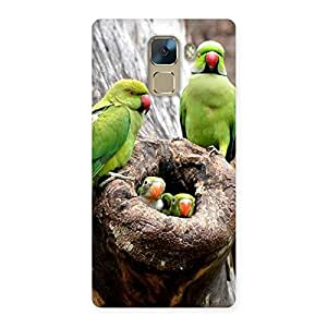 Special Parrot House Multicolor Back Case Cover for Huawei Honor 7