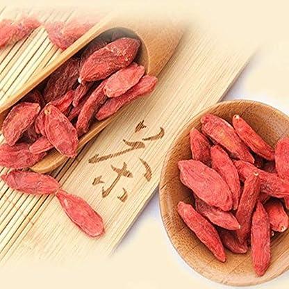 Natrlicher-Goji-Beeren-Tee-100g-021LB-Wolfberry-Goji-Beeren-Krutertee-duftender-Tee-Blumentee-Botanischer-Tee-Krutertee-Grner-Tee-Roher-Tee-Blumen-Tee-Gesundheit-Tee-Chinesischer-Tee