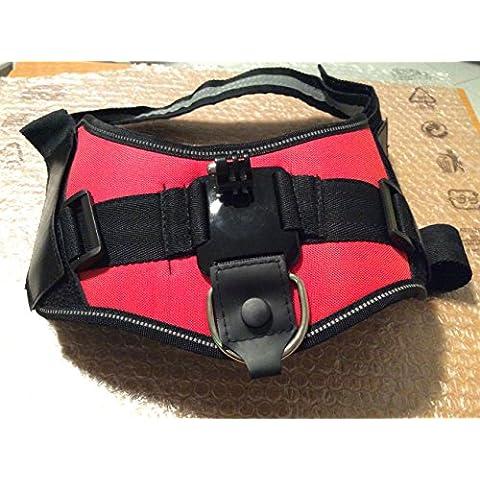 Qumox Fetch montaggio cane fotocamera imbracatura regolabile