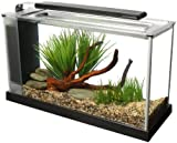 Fluval Spec Aquarium 19L Black
