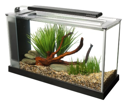 fluval-spec-v-aquarium-kit-5-gallon-black