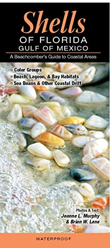 Shells of Florida-Gulf of Mexico: A Beachcomber's Guide to Coastal Areas by Jeanne L. Murphy and Brian W. Lane (1-Apr-2012) Pamphlet