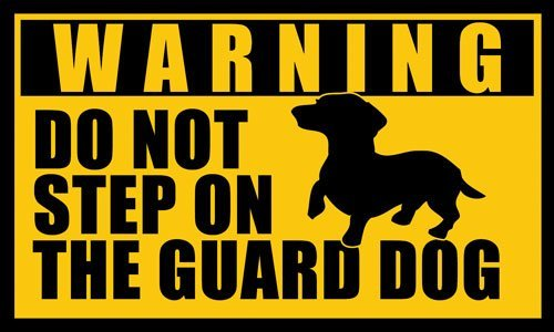 DACHSHUND Do Not Step on the Guard Dog Sticker (warning dach funny) by American Vinyl