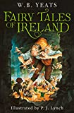 Fairy Tales of Ireland (English Edition)