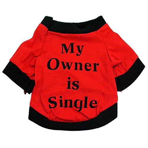PZSSXDZW Pet liefert Hundebekleidung Baumwolljersey Bedruckte Meine mitfühlenden kleinen und mittleren Hunde im Frühjahr und ()