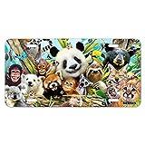 Grafiken und Mehr Animal Buddies Selfie Panda Eisbär Faultier Lemur Toucan Neuheit Metall Vanity Tag License Plate