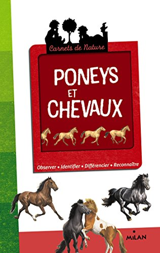 Poneys et chevaux - NE