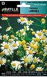 Graines aromatiques de Batlle - Camomille Romaine (Seeds - 20-40cm)