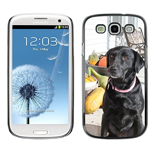 Grand Phone Cases Bild Hart Handy Schwarz Schutz Case Cover Schale Etui // M00142163 Hunde Fall-Herbst-Haustiertier, Welpe // Samsung Galaxy S3 S III SIII i9300 (Galaxy Samsung Welpe Fall S3)