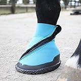 Woof Wear medizinischer Hufschuh, blau, 9