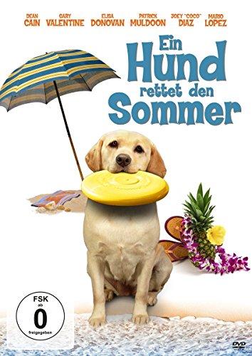 Bild von Ein Hund rettet den Sommer