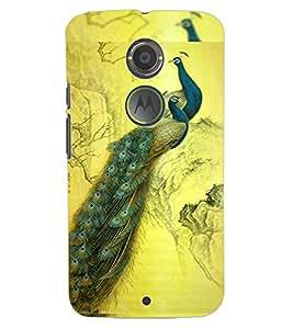 ColourCraft Beautiful Peacocks Design Back Case Cover for MOTOROLA MOTO X2