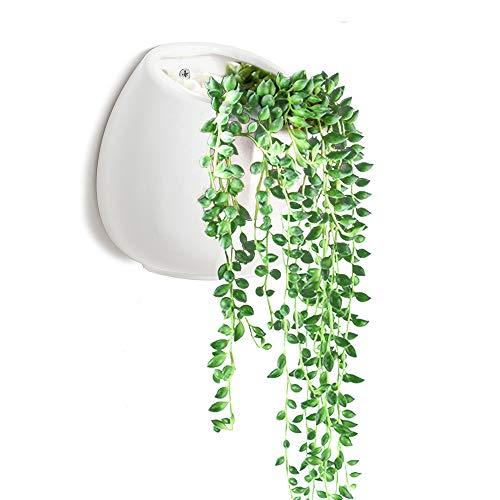 Succulente vaso, y & m (tm) vasi da fiori da interno in ceramica piante vaso per piante grasse e cactus